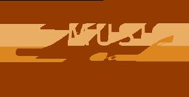 Musica Reale logo